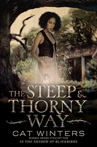 SteepandThornyWay